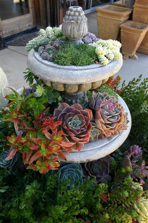 unique planters for succulents 17 unique succulent planters that can make a statement