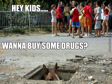 Menace To Society Meme - don t trust horses they re all secret drug dealers and