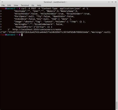 tutorial create docker image docker tutorial series part 8 docker remote api flux7 blog