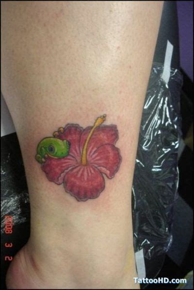 coqui tattoos designs for coqui frog tattoos rosas frogs