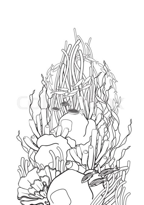 Clipart Of A Sketched Reef by Graphic Coral Reef In Line Style Plants