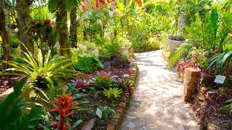 Vallarta Botanical Gardens by Vallarta Botanical Gardens In Vallarta Jalisco Expedia