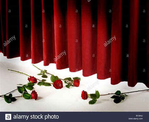 c curtain call theatre curtain call with red roses stock photo royalty