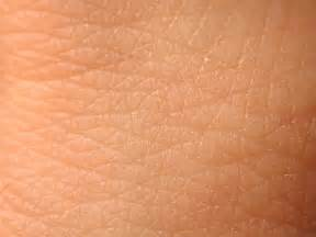 opinions on human skin