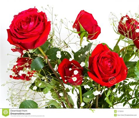 Travel Toaster Red Rose And Baby S Breath Bouquet Stock Photo Image