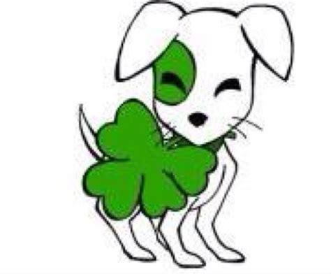 lucky rescue lucky puppy rescue luckypuppyrnr
