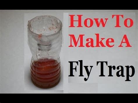 how to trap house flies catch hundreds of house flies in days with a homemade trap funnydog tv