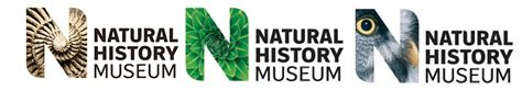 design museum london logo natural history museum joel wright insect project