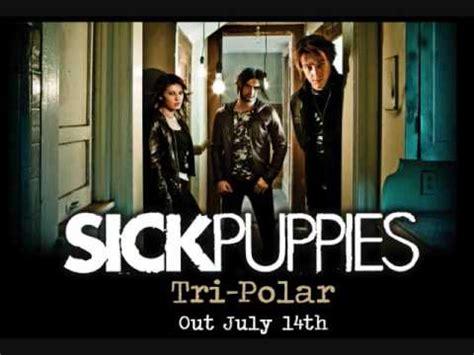 sick puppies war fighter war sick puppies