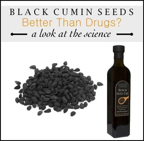Black Cumin Seed And Liver Detox Pubmed by 13 Best Images About Miracle Healing Plants Seeds Spices