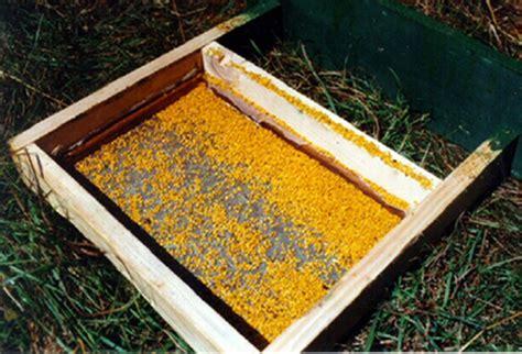 tappeti per cer costo polline e variazioni sul tema