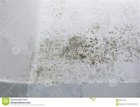 nasse flecken an der wand feuchte flecken an der wand home image ideen