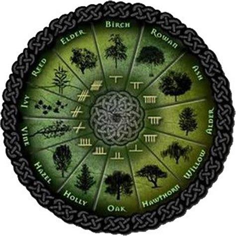 alfabeto celtico lettere ogham l alfabeto celtico arda2300