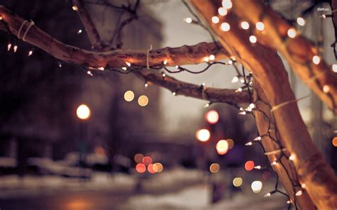 white christmas lights photography wallpaper