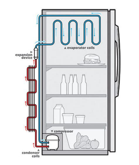 how refrigeration works diagram how does a refrigerator work real simple