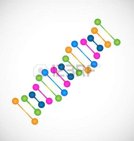 humanos con 3 cadenas de adn mejores 29 im 225 genes de cadena de adn y gen 233 tica en