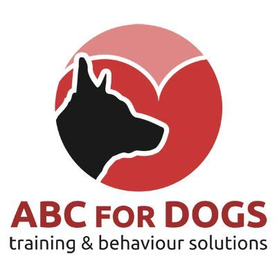 abc puppy abc for dogs trainer in chattenden rochester uk