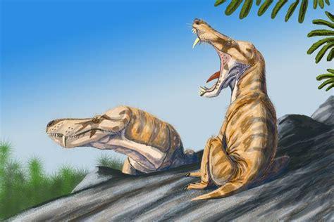 libro tijdperk pristerognathus wikipedia