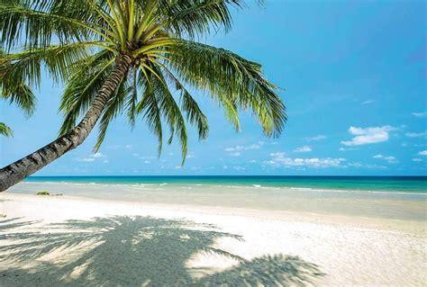 Exceptionnel Papier Peint Pour Chambre Ado #6: papier-peint-panoramique-plage-paradis.jpg