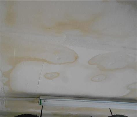 Brown Spot  Ceiling  Water Damage Servpro
