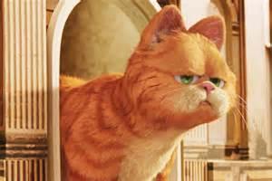 r 234 ver de chat signification du chat en r 234 ve doctissimo