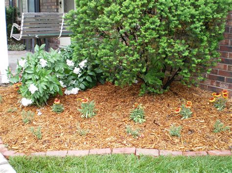 how to keep weeds out of flower beds mulch flower bed