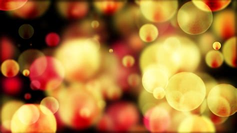 bokeh photography what is bokeh effect ehab photography