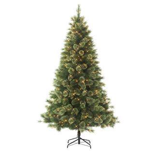 jaclyn smith christmas tree 6 5 pre lit carolina spruce tree kmart