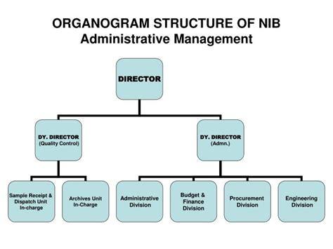description organogram of интерет аптека купить виагру