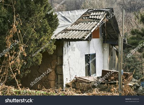 ghetto house music abandoned shanty ghetto house middle wilderness stock photo 36489244 shutterstock