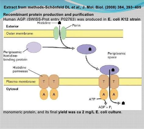 j protein expression purification recombinant protein expression and purification lecture