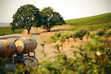 best wines california top 10 best wine routes in the world places to see in