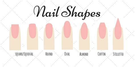 most popular nail length and shape what shape are you nail shapes the daily details