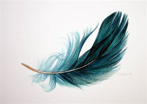 Floating Feather Drawing