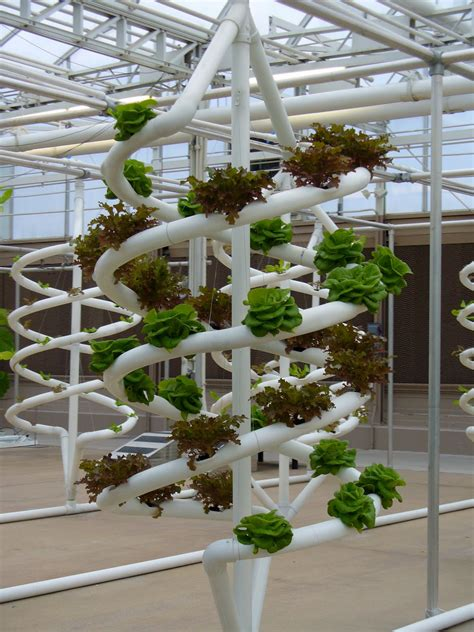 Vertical Hydroponic Gardening Systems 1000 Images About Aquaponics On Gardens
