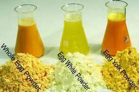 Kerry Bubuk Keju bubuk dan bahan kimia makanan albumen