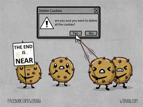 clear cookies delete cookies wirdou