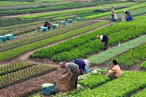 imagenes satelitales para agricultura fortalecer 225 n cooperaci 243 n y competitividad agr 237 cola