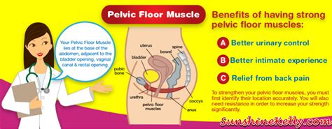 Pelvic Floor Disorder Symptoms by Vulvodynia Pictures Posters News And On Your