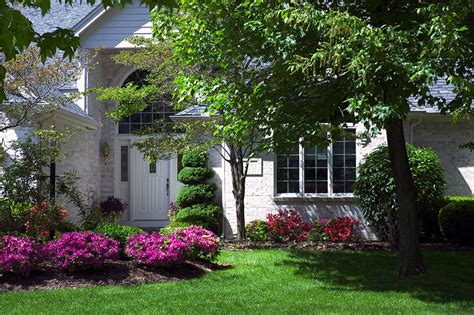 best shrubs for front yard landscaping sacramento landscaping recommended evergreen shrubs