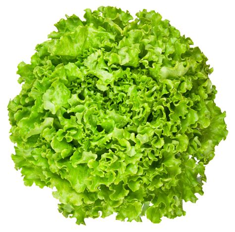 scrumpdillyicious guy s green greek salad with feta