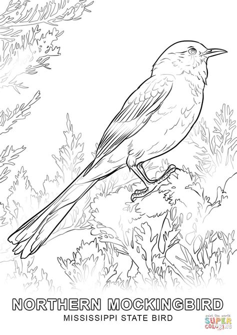 State Bird Coloring Page mississippi state bird coloring page free printable