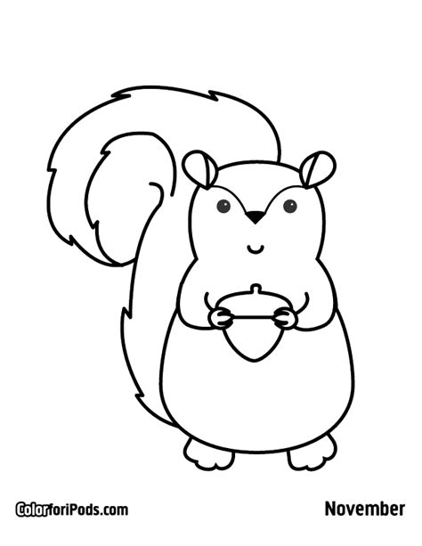 cute squirrel coloring pages kawaii coloring page squirrel printables pinterest