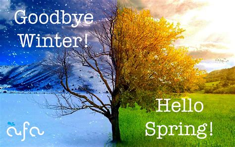 spring start spring archives aqua fun academy