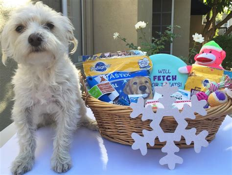 christmas gift ideas for dog groomer grooming gift basket step by step tutorial with pictures socal field trips