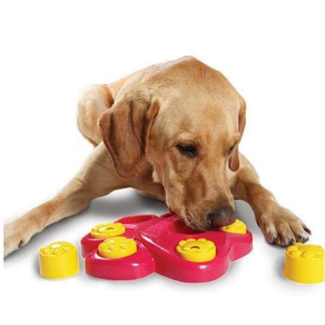 puzzle toys for dogs new multifunction large toys juguetes para perros toys for pet big dogs play bowl