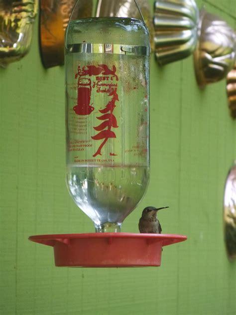 frugal freedom diy hummingbird nectar trash backwards blog