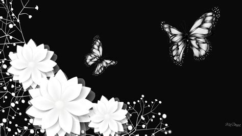 black and white wallpaper 70 hd black and white wallpapers for free