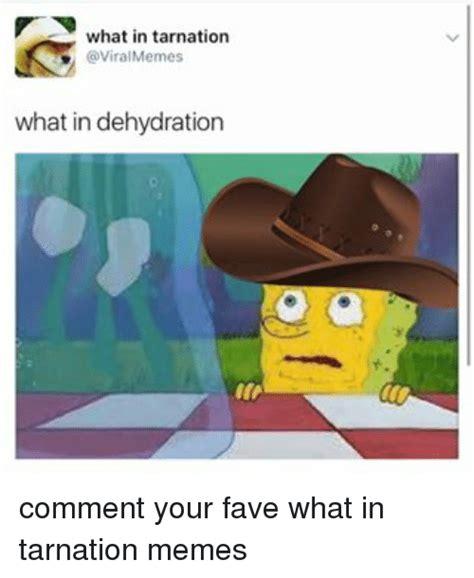 search funny comment memes  meme