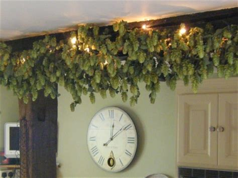Best 18 Hukins Hops for Wedding Decorations images on